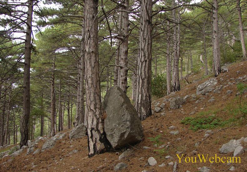 Камни на горе