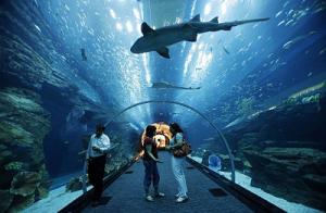 Барселона-аквапарк