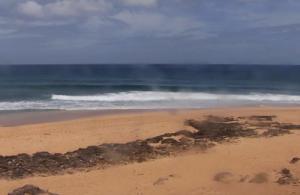 Пляж в поселке Пупекея на острове Оаху на Гавайских островах