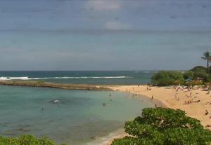 Черепаший залив на острове Оаху на Гавайских островах