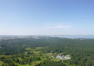 Таллин с Таллинской телебашни
