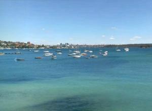 Залив Роуз в Сиднее в Австралии