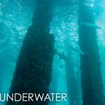 Подводная веб камера под пирсом Дирфилд-Бич