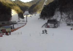 Трасса Золотая на горнолыжном курорте Ёнпхён в Пхёнчхане