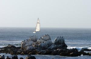 Залив Monterey Bay в городе Монтерей в Калифорнии