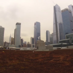 Крыша конференц-центра Якоба Явица в Нью-Йорке