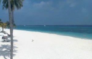 Пляж на острове Куреду из отеля Kuredu Island Resort & Spa