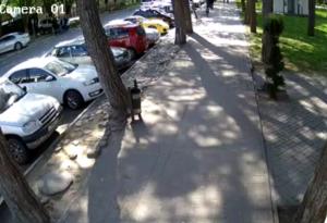 Улица Краснодарская в Анапе