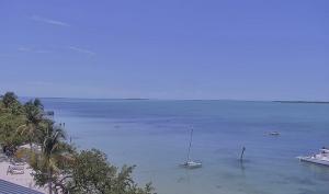 Вид из отеля Playa Largo Resort & Spa в Ки-Ларго