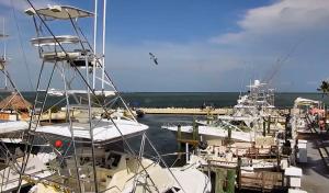 Китовая гавань в Айламорада во Флориде