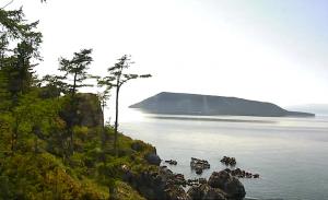 Лежбище нерпы на острове архипелага Ушканьи острова