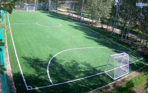 Футбольное поле в Спортивной деревне Новинки