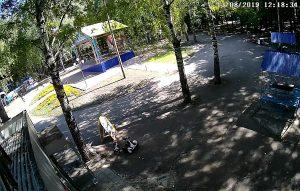 """Парк """"Молодежный"""" в Ульяновске"""