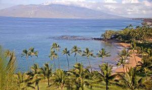 Вид из отеля Wailea Beach Resort