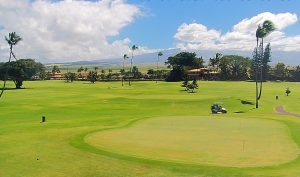 Поле для гольфа Maui Country Club на острове Мауи